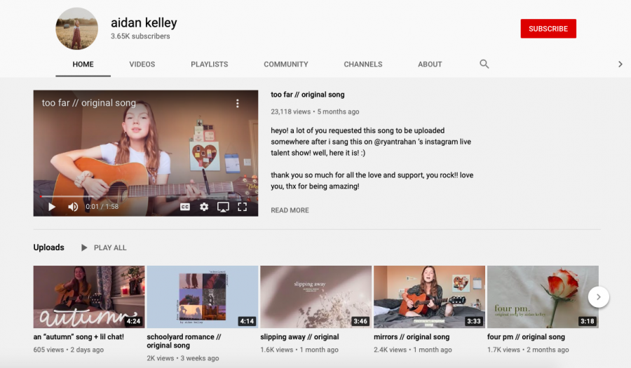 Meet Youtube Artist : Aidan Kelley